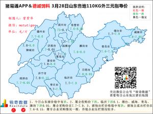 猪易通app3月28日山东