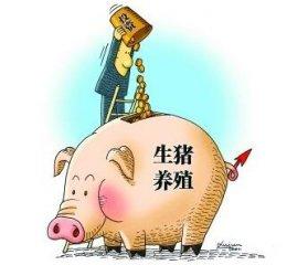 2017年快过1/4,看看行业大佬们在养猪业