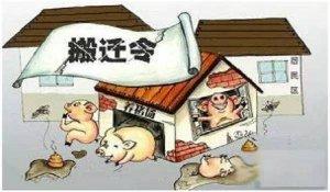 猪场被拆之后,让退养户租赁、承包或者给