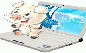 互联网为农业插上翅膀  为猪场提供信息化服务