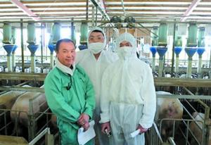 从民族性格角度看各国养猪业――日本养猪篇