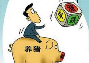 猪价一年跌两成 是存栏还是卖?警惕出现踩踏式抛售