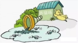 鼓励畜禽粪污就地就近