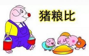 这个省生猪价格连降十周 猪粮比价创下今年新低