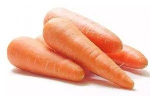 胡萝卜喂猪,效果超乎