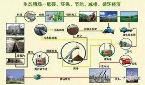 养猪与环保矛盾日趋化的根源何在?如何化