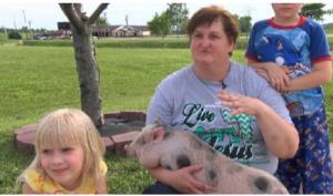 这小猪真聪明,救了主人性命・・・・・・