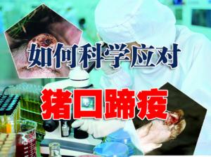 猪口蹄疫疾病防治的一些看法