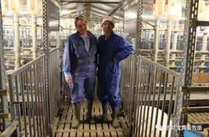 都是以小型猪场为主,德国为什么养猪比中国厉害?