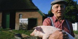 在欧洲,畜禽粪污是怎么管理的?