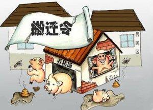 大量养猪场被拆迁,背后原因有时候一言难尽……