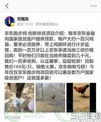 京东鸡vs网易猪,互联网企业纷纷转行养殖业