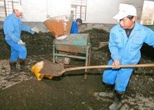 【环保】粪污利用的几种模式