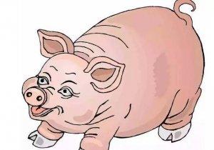 猪价小幅上涨,不过是套路,预测一周后猪