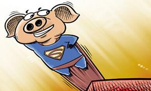 """农业市场:""""飞天猪""""风光不再肉价两年来"""