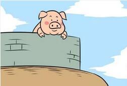 众多饲料企业为何在猪价最高时投资养猪?