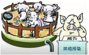 干货:从南猪北调和价格震荡中看待猪业发