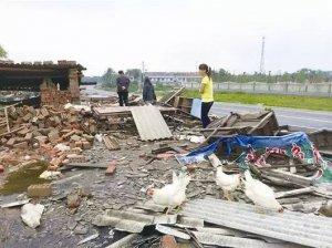 拆迁禁养过程中具体到日龄的畜禽补偿标准,供参考!