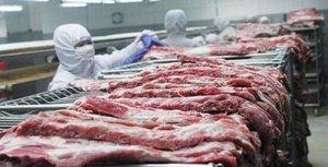 连续4个月猪价持续下跌 下半年可能难有起