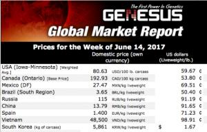 2017年6月俄罗斯市场报告