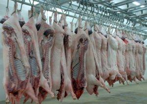 东莞去年生猪总消费量约46万吨 屠宰视频