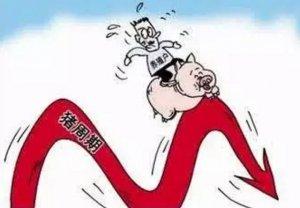 猪价上涨艰难 持续在13.9元/公斤附近震荡