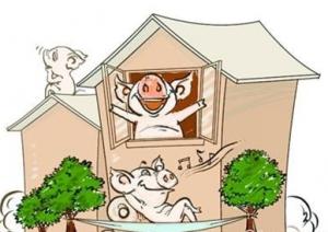 造价1000元/平方米的高楼养猪,好在哪里?
