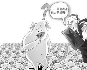 """新华社:猪价下跌主要原因还是""""猪太多了"""""""