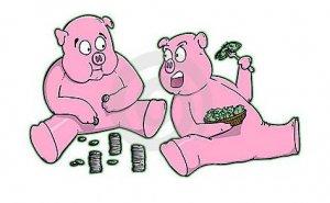 养猪人染上这两个字,只会越养越穷……