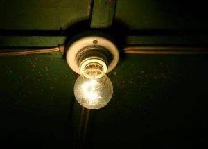 几个灯泡竟能让母猪多产仔?猪场光照建设,我们必须重视啦!
