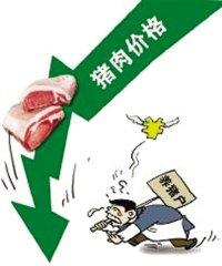 金华猪肉价格一跌再跌