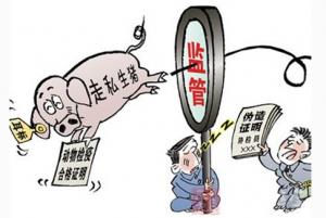 男子涉嫌走私生猪超7吨,被行政处罚