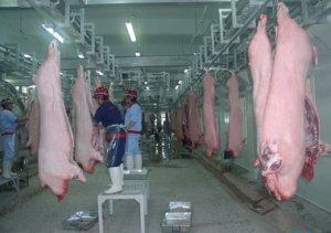 莱州实现生猪屠宰规范化 日上市猪肉产品约800头