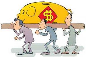 """""""猪倌""""杨培珍的脱贫致富路--肉猪效益好"""