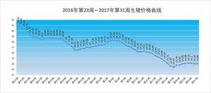 2017年第31周生猪价格、仔猪价格、玉米价格和猪粮比价分析:三季度生猪价格摸高要泡汤?