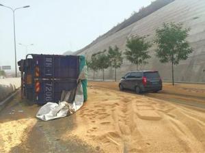 货车转弯过急导致大量饲料撒路面