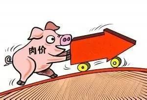 猪价回落别慌!猪价还有上涨空间!