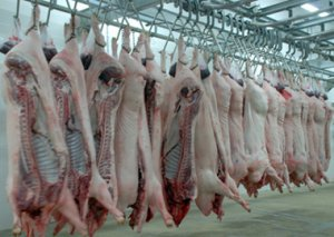 积极开展屠宰专项整治行动 升级生猪屠宰