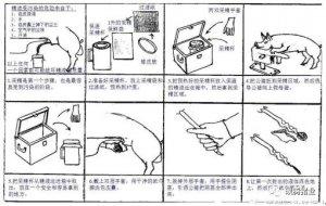 干货!图文解说影响猪精液质量的操作技巧