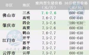 广东2017年9月9日猪价--稳中有跌