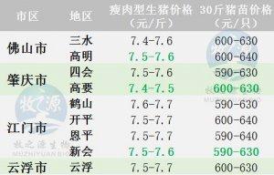 广东9月10日猪价--稳中有跌