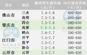 广东2017年9月11日猪价-稳定为主