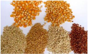 油脂旺季将至 豆粕会成为牺牲品吗?