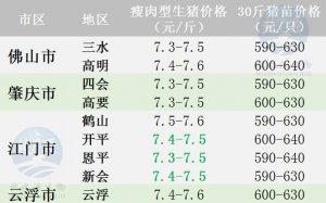广东2017年9月14日猪价