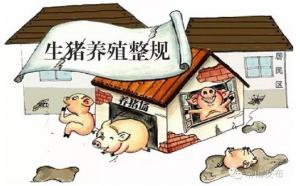 疏堵结合深化生猪养殖污染治理