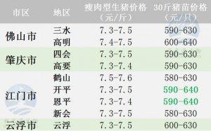 广东2017年9月20日猪