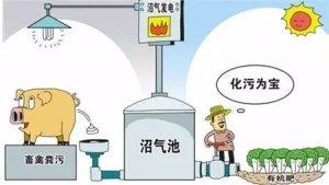 黑龙江确定畜禽粪污资源化利用5试点县 每县投入2000万
