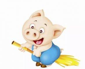 猪业最强风口:互联网+,您在路上了吗?