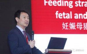 Kim教授:母猪营养对妊娠和泌乳有何影响