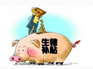 欧委会将向波兰养猪农民提供财政支持